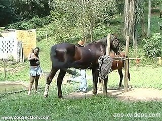 Outdoor amateur horse fucking with top babes