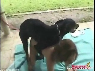 Female zoophilia with a dog on home cam