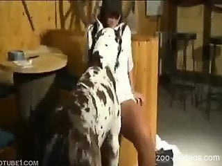 Great Dane shagging woman in the pussy
