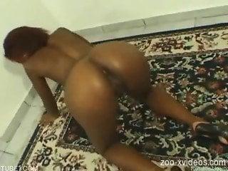 Naked ebony deep fucked by dog on home cam
