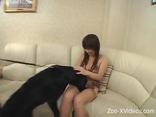 Home Japan zoophilia with a slutty obedient teen
