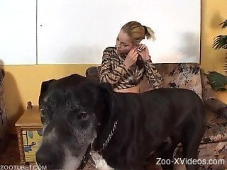 Busty babe takes her black dog for a few zoo scenes