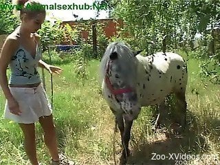 Sexy blonde tries out huge horse dick in various modes