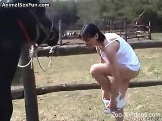 Horny brunette enjoys horse cock between the lips