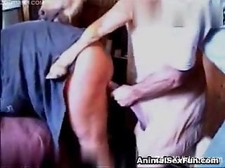 Extreme horse porn in brutal zoo fuck video