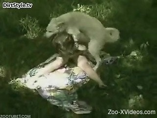 Busty woman sex with a dog in outdoor scenes