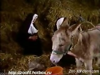 Nuns using the donkey to fuck them hard