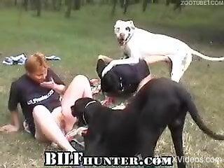 Needy woman enjoys sucking a stiff dog cock