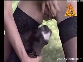 Dog humps women in the pussy during outdoor zoo