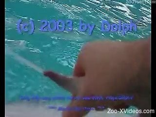 Marine zoophilia on cam in amateur porn video