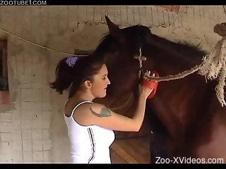 Big-boobed zoo slut and a muscular stallion