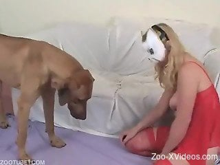 Masked female bangs with animal in doggy style