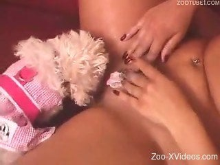 Big-boobed brunette gets her crack licked by a dog