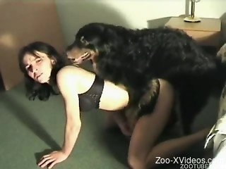 Hairy black dog nailed a sporty slender MILF