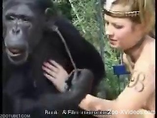 Monkey licks a pussy of a dirty-minded zoophile