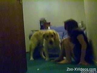 Bored doggy is playing with a filthy-minded zoophile