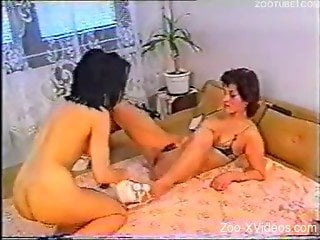 Two filthy MILFs zoophiles shares a black dog dick
