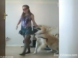 Masked cutie in jeans miniskirt bangs with a white dog