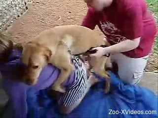 Cutie in striped skirt have outdoor bestiality with a dog