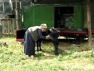 Black pony gets a good blowjob by a farm zoofil