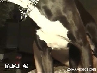 Dirty small-tit chick gets nicely drilled by a doggy