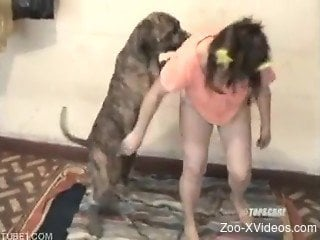 Dog gets teen down on floor and owns her vagina