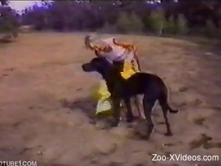 Skinny zoophile hooks up with big black dog in nature