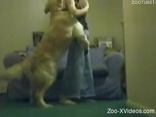 Grand dog goes all the way with helpless mistress