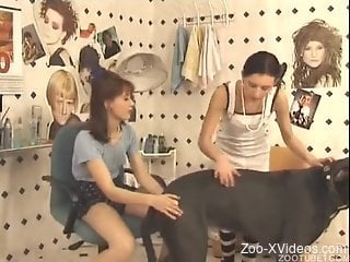 Trained black dog and two dick-sucking zoophiles