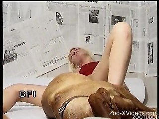 Bleached hooker gets nicely drilled by her doggy