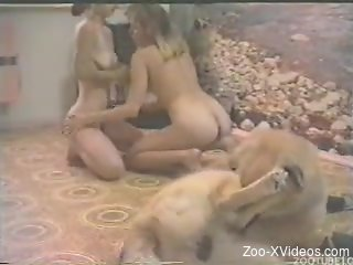 One dog to fuck two tight bitches in hot zoo video