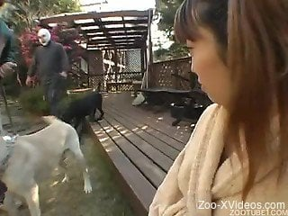 Asian beauty with massive boobies enjoys hardcore dog bestiality