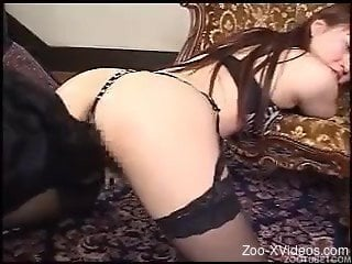 Sensual Asian secretary is playing with a big black dog