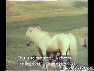 Awesome pony and sweet girls are enjoying farm bestiality XXX