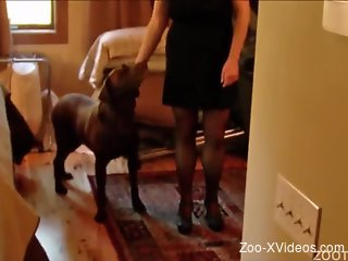 Slender blonde in stockings enjoys dog bestiality in the bedroom