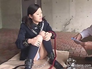 Asian chick is trying to fuck with her dog for the first time