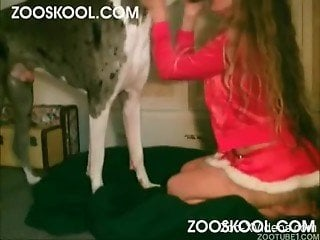Chick in Christmas outfit relaxes in bed with horny hound