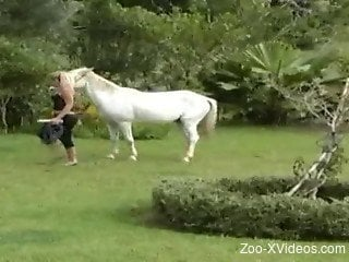 Good-looking brown horse and passionate blonde have nice sex
