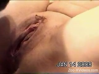 Masturbation session cut short by a furry pussy licker