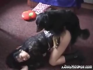 Wild doggy style fuck with a horny brunette babe