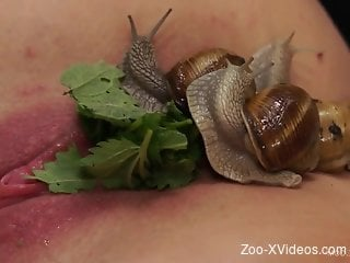 Snails loving whore gets tons of them on her body