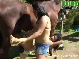 Curly-haired Latina and her GF pleasuring a hung stallion