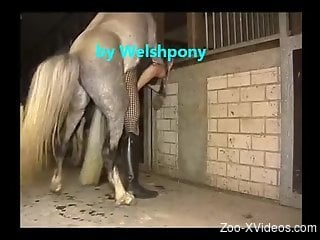 Slutty crossdresser getting his asshole fucked by a horse