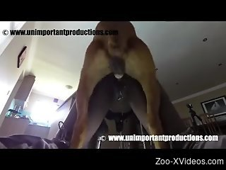 Rough fuck scene featuring a black babe and her dog
