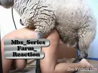 Big-breasted mommy getting fucked by a sheep