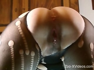 Hoe in ripped pantyhose gets fucked REAL deep