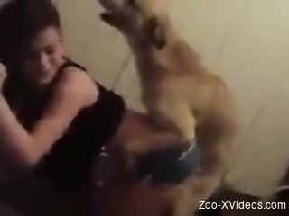 Fast-paced fuck scene with a submissive zoophile