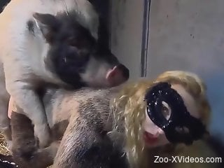 Compilation of passionate zoo sex with kinky dogs
