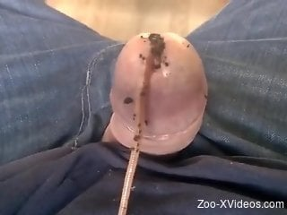 Aroused man loves fee3ling the worms into his penis