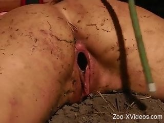 Full amateur zoophilia with insects for two lesbians